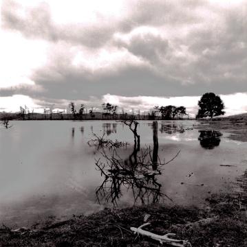 Begwyns Lake